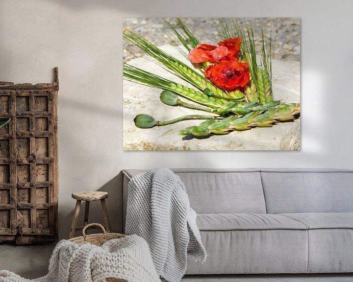 Sfeerimpressie: Zomerkleuren - rode papaver en groene oren van Dagmar Hopf