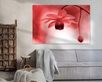 Lantaarntje met spinnetje vintage rood von Sascha van Dam