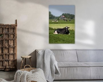 Koe in Fries weidelandschap van Fonger de Vlas