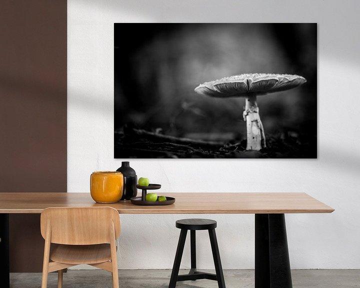 Sfeerimpressie: black and white van Maja Ooms