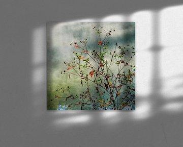 Autumn | Twickel Delden (2) van Rob van der Pijll
