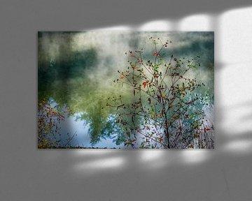 Autumn | Twickel Delden (3) van Rob van der Pijll