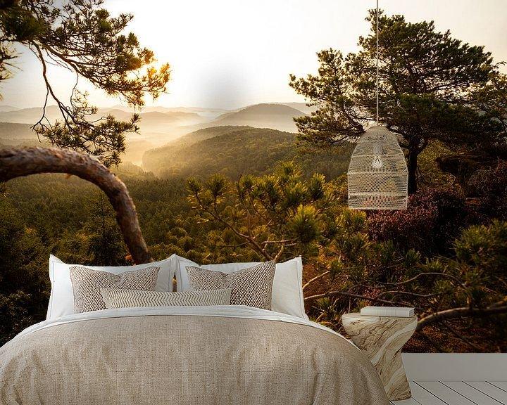 Beispiel fototapete: Pfälzer Wald im Morgennebel von Jiri Viehmann