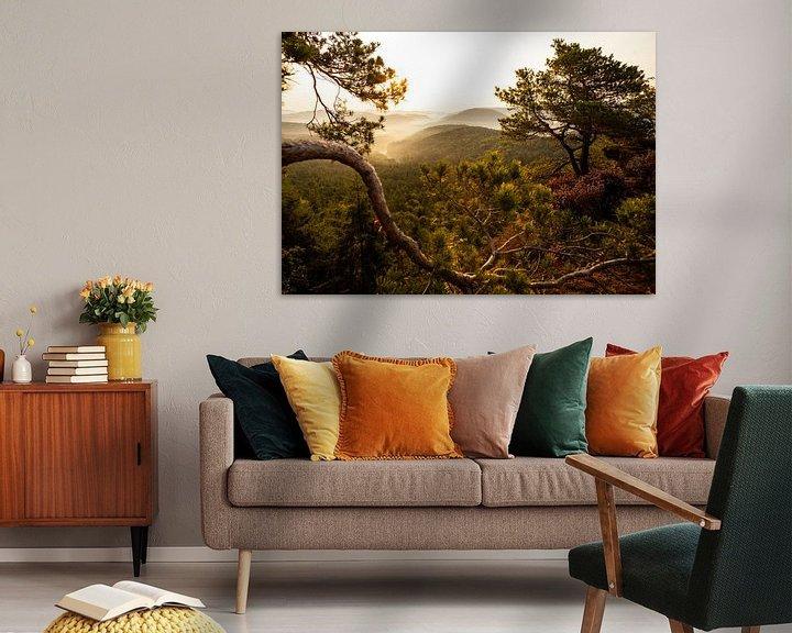 Beispiel: Pfälzer Wald im Morgennebel von Jiri Viehmann