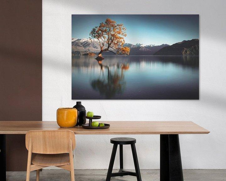 Beispiel: Frailty - Lake Wanaka von Thom Brouwer