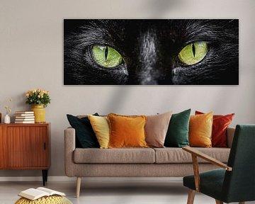 Door de ogen van de kat (panorama)