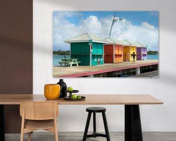 Tropische kleuren van Jeroen Kleiberg