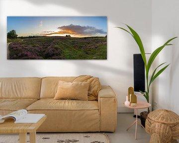 Panorama Posbank, Rheden von Stefan van der Wijst