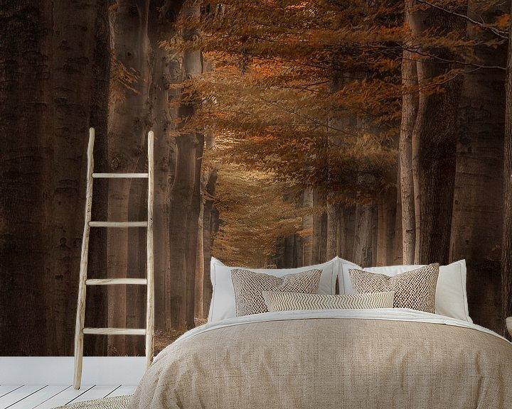 Sfeerimpressie behang: Autumn light van Rigo Meens