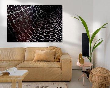 artwork spider... kunst van de spin von Els Fonteine