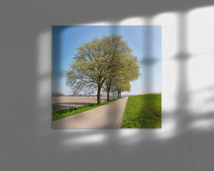 Sfeerimpressie: Vrijstaande bomen langs een polderweg achter een dijk, Anna Pauwlona, , Noord-Holland van Rene van der Meer