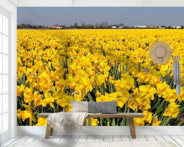 Sfeerimpressie behang: Bollenveld met narcissen, Anna Pauwlona, , Noord-Holland van Rene van der Meer