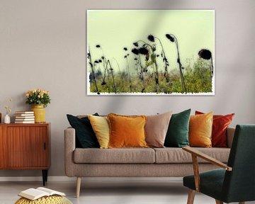 Herbst abstrakt - Sonnenblumenfeld von Christine Nöhmeier