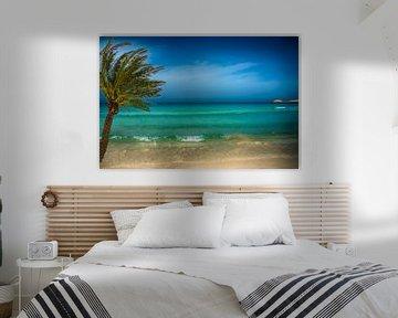 romantisch e azuren zee met palmboom van Rita Phessas