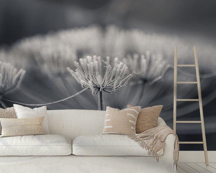Sfeerimpressie behang: Schermbloem met rijp van Leanne lovink