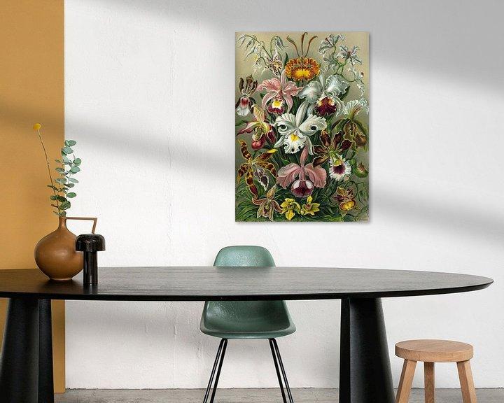 Sfeerimpressie: Orchid, Ernst Haeckel