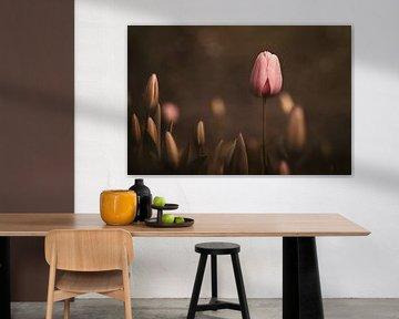 Moody Pink Tulip von Marina de Wit