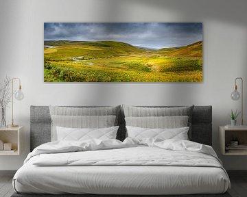 Lappendeken van grassen en mossen, heuvellandschap Wales van Rietje Bulthuis