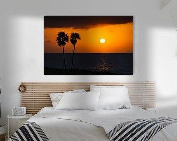 Sunset Palmen van M DH