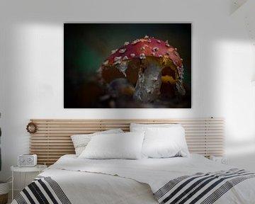 Op een grote paddenstoel, rood met witte stippen. von Mariska Brouwenstijn