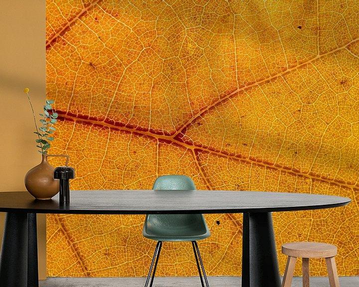 Sfeerimpressie behang: Detail van een herfstblad van Dirk Jan Kralt