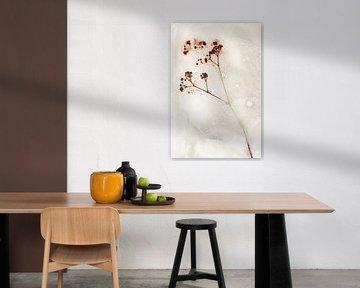 Blumen getötet 1 von Wim van Ooijen