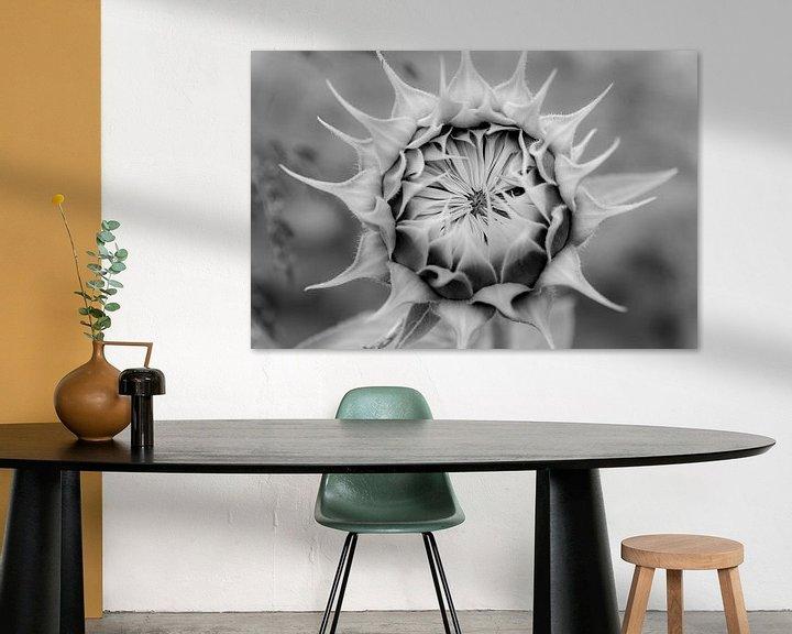 Sfeerimpressie: Gesloten zonnebloem van Maerten Prins