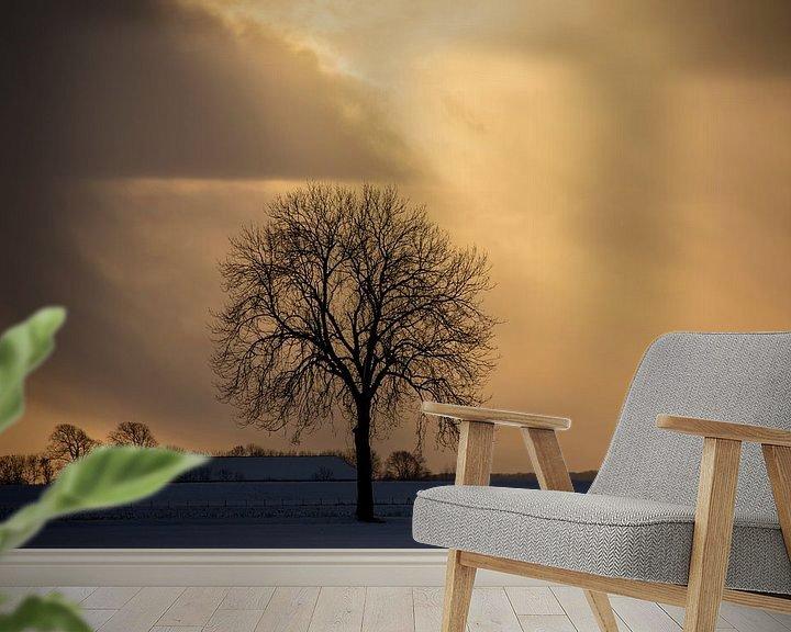 Beispiel fototapete: Sonnenuntergang in Nieuwe Statenzijl von Jan Sportel Photography