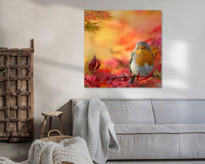 Sfeerimpressie: Herfstkleuren met roodborst van Teuni's Dreams of Reality
