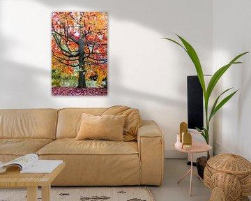 Marvelous Maple van Lars van de Goor