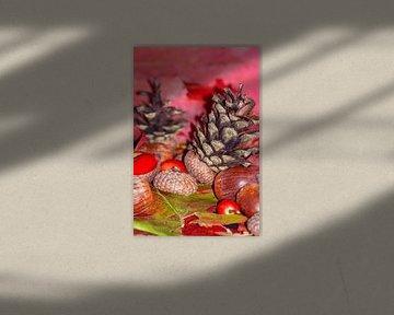 Hazelnuts in arbores autumnales van Michael Nägele