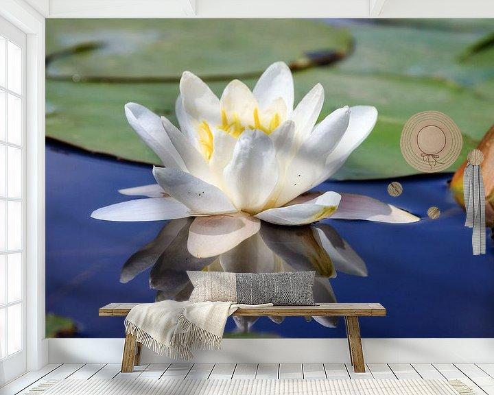 Sfeerimpressie behang: Witte waterlelie in het water met reflectie van Dennis van de Water