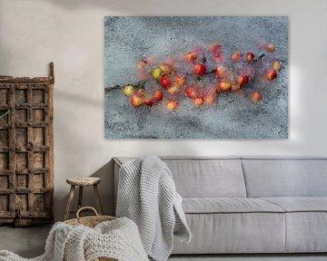 Blume gefroren oder nicht 1 von Wim van Ooijen