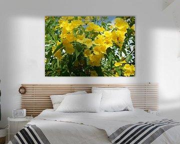 zomer bloemen von Bart Cornelis de Groot