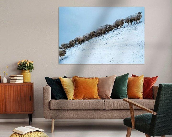 Beispiel: Onder de wol... von Ton C Kroon