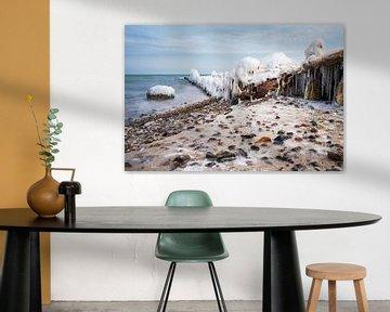 Groynes on shore of the Baltic Sea in winter time van Rico Ködder