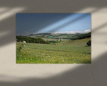 Schotland landschap van Babetts Bildergalerie