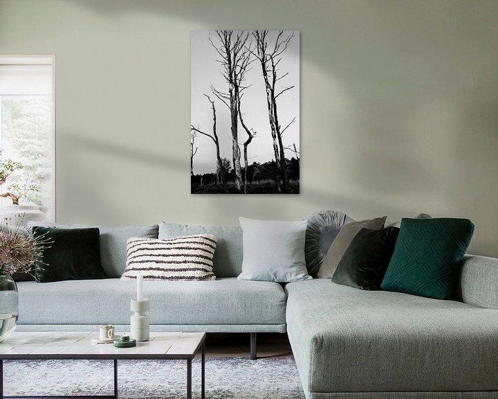 Sfeerimpressie: Bos van Erik Reijnders