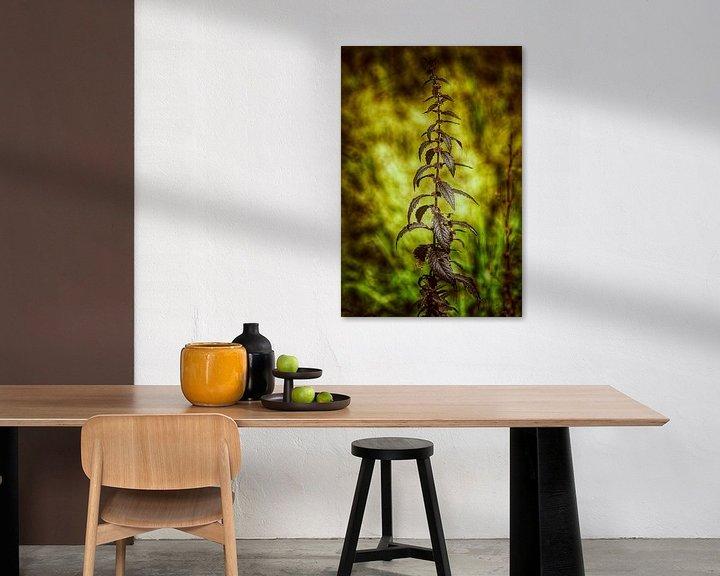 Sfeerimpressie: Gras in het licht van Max Steinwald