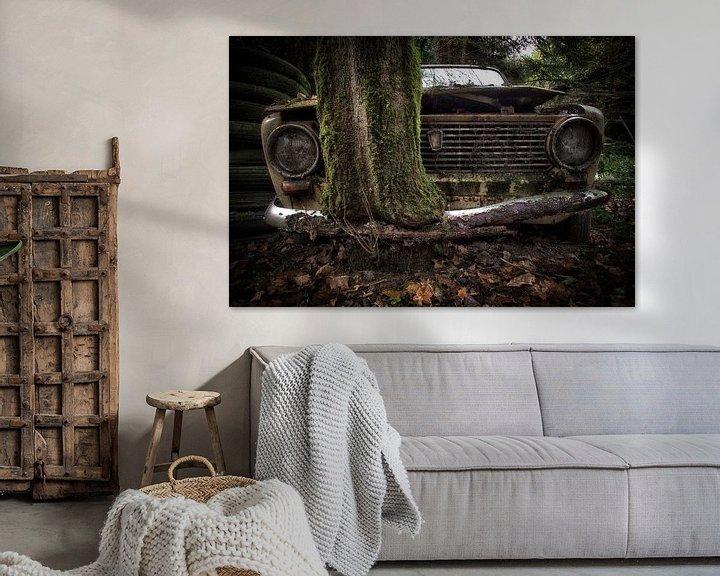 Beispiel: Lada mit Baum durch Stoßstange von Kelly van den Brande