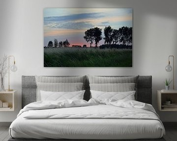 zonsondergang in een polder in Zeeuws-Vlaanderen van Anne Hana