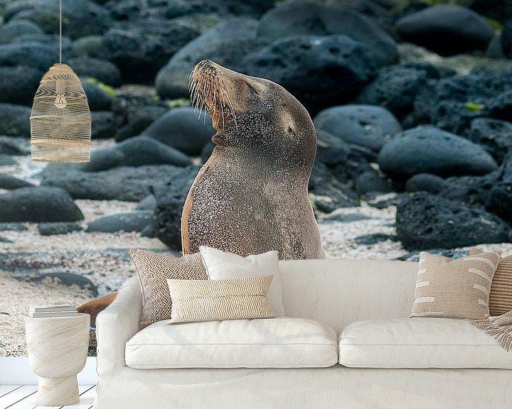 Sfeerimpressie behang: Galápagoszeeleeuw van Maarten Verhees