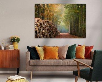 De houten muur van Fabrizio Micciche