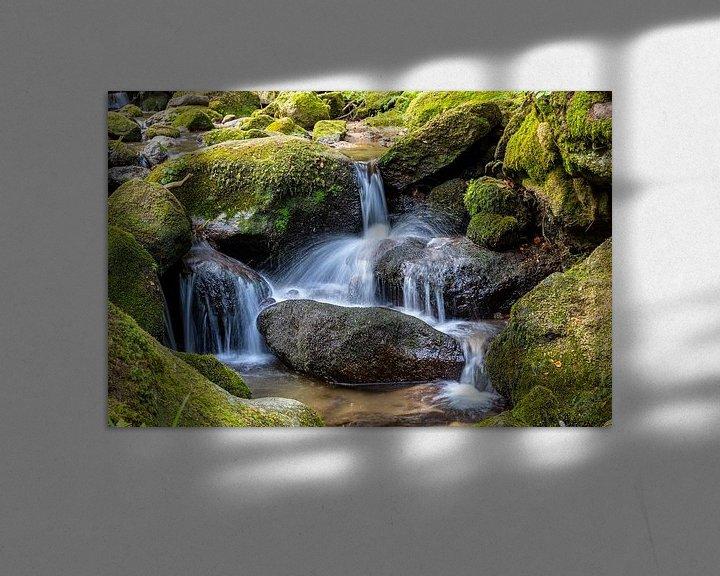 Sfeerimpressie: Waterfall - Black Forest van Ursula Di Chito