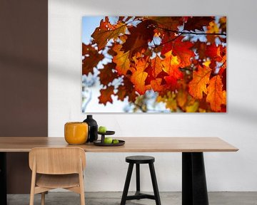 Herfstbladeren in de zon van Nel Diepstraten