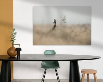 Lonely bird van Ben Bokeh
