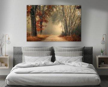 Herfst bos in de mist van Rob Visser