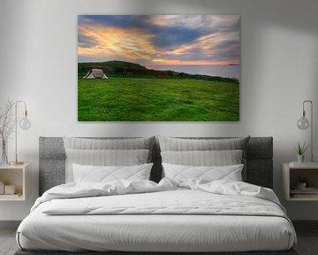 Marloe Wales