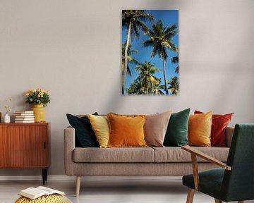 Wuivende palmen tegen de blauwe lucht van Margot van den Berg