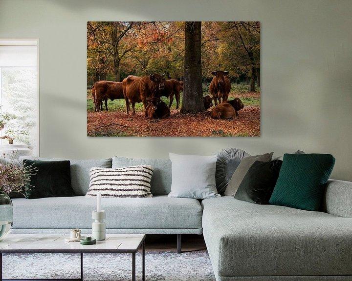 Sfeerimpressie: Koeien in de wei van Elly van Veen